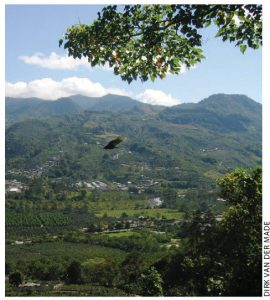 Costa Rica has added high-tech manufacturing to traditional exports, such as coffee from Orosi Valley plantations.