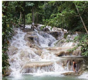 Dunn's River Falls is a popular spot for tourists who like to climb the falls.