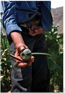 Afghanistan is, by far, the world's biggest producer of opium (a title long held by India during the days of the Raj).