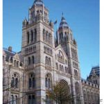 The Natural History Museum in London is part exhibition space, part research facility and houses some artifacts collected by Charles Darwin.