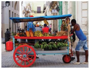 Cuba is home to many varieties of tropical fruit, often sold by vendors such as these, in the streets of Havana.