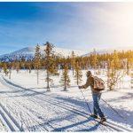 Norwegians are avid cross-country skiers.