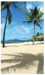 Green Cay Beach on the U.S. Virgin Islands is an oasis of thatched sun huts and hammocks.  (Photo: Tamarind Reef Resort & Spa and Green Cay Marina)