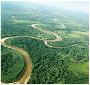 The Amazonian Rainforest runs through nine countries. Bolivia is one of them. (Photo: Bolivian ministry of tourism)