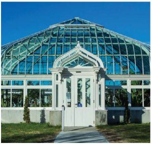 The Central Experimental Farm's heritage greenhouse is home to many exotic tropical plants. (Photo: Canadian Agricultural museum)