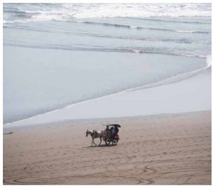 A traditional horse cart, known as an andong, transports passengers who are enjoying the view of Parangtritis Beach, Yogyakarta. (Photo: Copyright 2016, Robert S. Vibert)