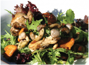 Sautéed Mixed Mushroom Salad (with Sesame Balsamic Vinegar Sauce) (Photo: Larry Dickenson)