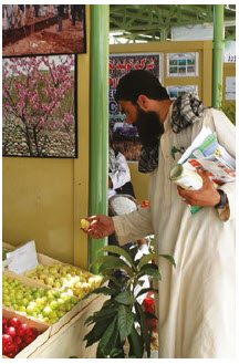 Afghanistan's main exports to Canada include fruit and nuts. (Photo: U.S. State Department)