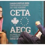 Promising trends on CETA's first birthday