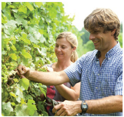 Michael Marler and Véronique Hupin, of Les Pervenches, work the vines at their winery.  (Photo: les pervenches)