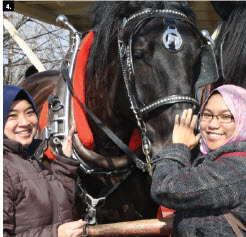The Canadian Federation of University Women's diplomatic hospitality group hosted a visit to Stanley's Maple Farm. From left, Siti Hazura Mohd Ghaus and Azidah Puteri Buang (both from Malaysia) with the horses who transported guests through the grounds. (Photo: Ulle Baum)