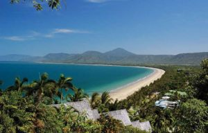 An overview of the beach at Port Douglas, a surfing mecca.