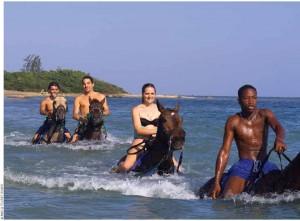 Take a horseback ride through the water at ChukkaHorseback Ride 'n' Swim in St. Ann.
