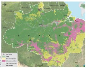 This map shows the scale and location of Amazonia deforestation, and the collateral damage in lost biodiversity. Belém (marked by a red dot) is located in the northeast.