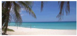 More than a million Canadians visit Cuba's sandy beaches every year.