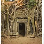 Angkor Wat, known as Temple City, is an archeological complex featuring the remains of administrative and religious buildings in Cambodia.