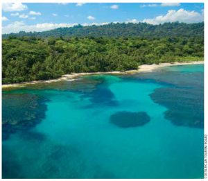 Visitors will find this coral reef on the Caribbean coast of Costa Rica.