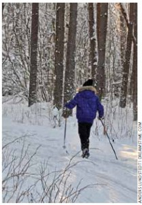 Cross-country skiing is a popular sport in Sweden. The average life expectancy of Swedes is 81.9 years.