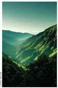 Madeira, is a semi-tropical island in the Atlantic that is blessed with a perfect climate.