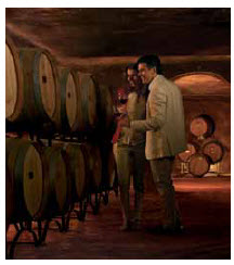 The Mendoza Wine Road is a favourite attraction for oenophiles.