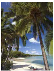 Small wonder that tourism dollars account for 75 percent of Cook Islands' GDP.