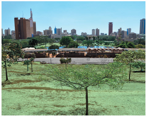 The Chinese have built a new ring road around Nairobi, the capital of Kenya, whose skyline is pictured here.