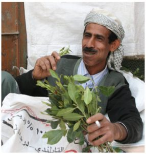Qat or khat, the Somali mild narcotic of choice, has also flooded Kenya in recent years and is being re-exported from East Africa to Somali communities and others in Europe.