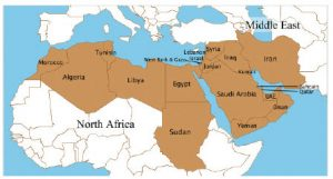 The MENA region, shown in brown, has been in a period of unforeseen turmoil and transition.