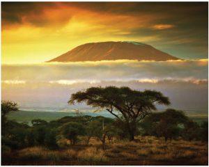 Mount Kilimanjaro, as seen from Amboseli National Park. (Photo: © Niserin | Dreamstime.com)