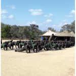 Would-be rangers doing their physical training at the Southern African Wildlife College's ranger division.