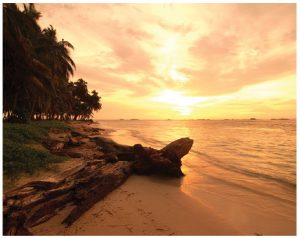 The islands of Bocas del Toro feature many beautiful beaches and attractions. (Photo: panama tourism)