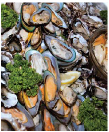Green-lipped mussels offer arthritis relief and other medicinal benefits. (Photo: © Janecat11 | Dreamstime.com)