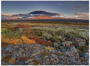 The national park at Thingvellir is at its most colourful in the autumn. (Photo: Ragnar Th. Sigurdsson)
