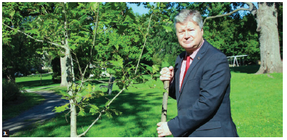 Latvians in Canada celebrated their native country's centenary by planting a red oak at Strathcona Park. Shown is Ambassador Kãrlis Eihenbaums doing the honours. (Photo: Ülle Baum)