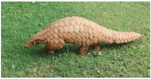 Even the lowly and secretive pangolin is being hunted ceaselessly in Africa to satisfy Asian demand. (Photo: © Positive Snapshot | Dreamstime.com)