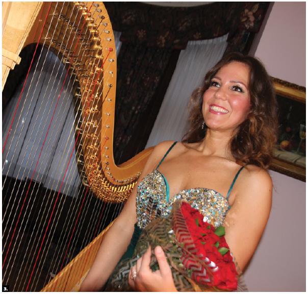 Hungarian Ambassador Bálint Ódor hosted a concert at the embassy featuring harpist Klára Bábel, who is shown here. (Photo: Ülle Baum)