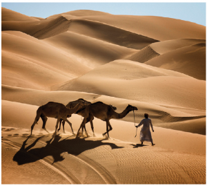 United Arab Emirates boasts the planet's largest uninterrupted sand desert.  (Photo: Embassy of UAE)