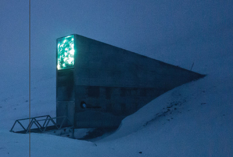 On an island 1,300 kilometres from the North Pole is Norway's Svalbard Global Seed Vault. It stores nearly one million seed samples — everything from apples and tomatoes to forage grasses and orchids, essentially a back-up copy of the world's plants. (Photo: CROP TRUST)