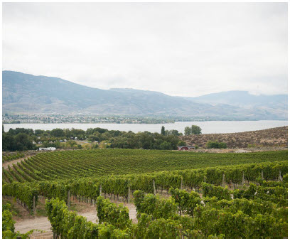 Nk'Mip Cellars, North America's first Aboriginal-owned and operated winery, is located on the traditional territory of the Osoyoos Indian Band. Below, Justin Hall is a winemaker and member of the Osoyoos Indian Band. (Photo: Nk'mip Cellars)