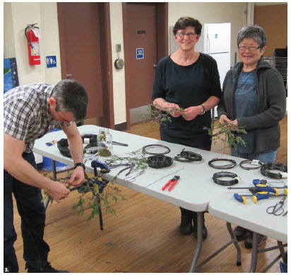Members of the Ottawa Bonsai Society prepare for a virtual bonsai show at the Japanese Embassy. (Photo: Ottawa Bonsai Society)
