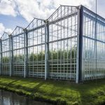 The Netherlands is the world's second largest agricultural exporter. Climate and geography both play roles in the country's productivity. Shown here is a tomato nursery and greenhouse in Harmelen. (Photo: Kloeg008)