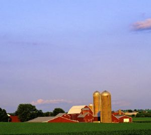 The U.S. is the largest exporter of food on the planet. American farms contributed about 0.6 per cent to overall gross domestic product in 2019, while direct on-farm employment accounted for 1.3 per cent of U.S. employment. This farm is in Illinois. (Photo: © Gerald D. Tang | Dreamstime.com)